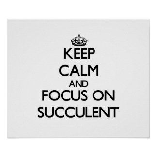 Keep Calm and focus on Succulent Poster