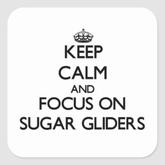 Keep calm and focus on Sugar Gliders Square Sticker