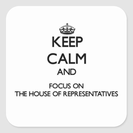 Keep Calm and focus on The House Of Representative Square Stickers