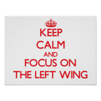 Keep Calm and focus on The Left Wing Posters