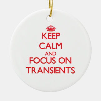 Keep Calm and focus on Transients Christmas Ornament