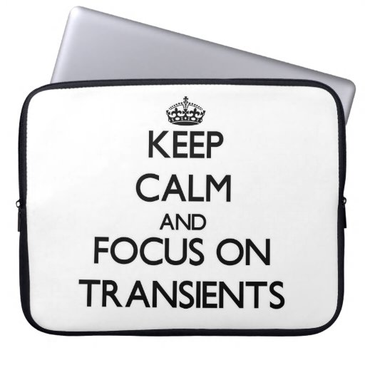 Keep Calm and focus on Transients Laptop Computer Sleeve