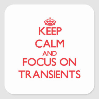 Keep Calm and focus on Transients Stickers