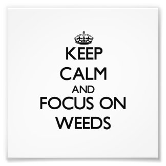 Keep Calm and focus on Weeds Photo Art