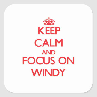 Keep Calm and focus on Windy Stickers