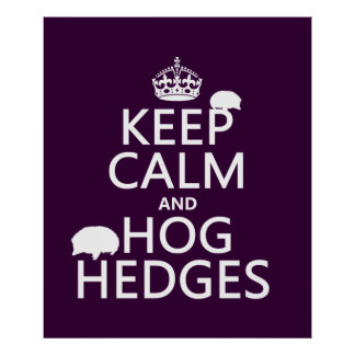 Keep Calm and Hog Hedges (Hedgehogs) (all colors) Poster