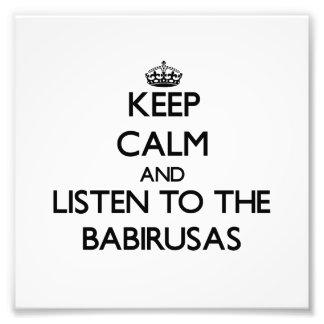 Keep calm and Listen to the Babirusas Photograph