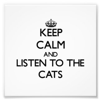 Keep calm and Listen to the Cats Photograph