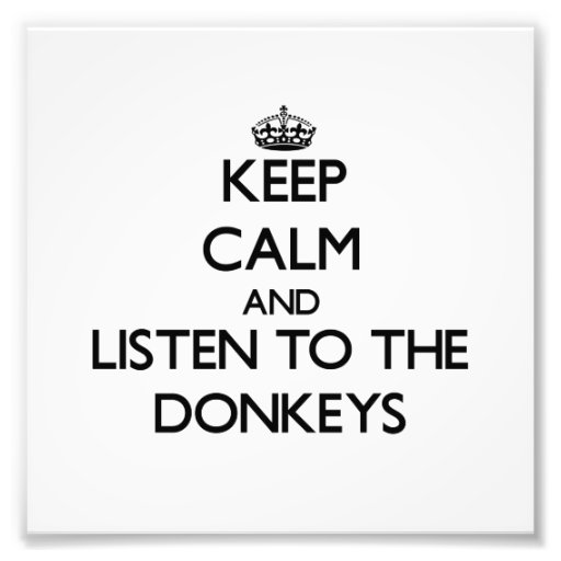 Keep calm and Listen to the Donkeys Photographic Print