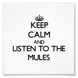 Keep calm and Listen to the Mules Photo Print