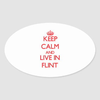 Keep Calm and Live in Flint Oval Sticker