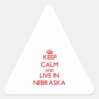 Keep Calm and live in Nebraska Triangle Sticker