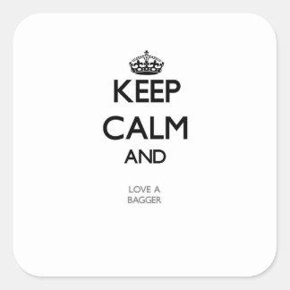 Keep Calm and Love a Bagger Sticker