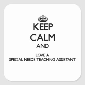 Keep Calm and Love a Special Needs Teaching Assist Sticker