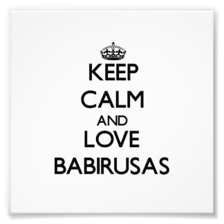 Keep calm and Love Babirusas Photo