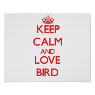 Keep calm and love Bird Posters