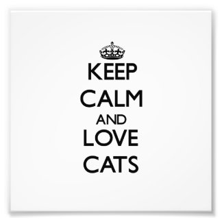 Keep calm and Love Cats Art Photo