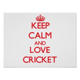 Keep calm and love Cricket Poster