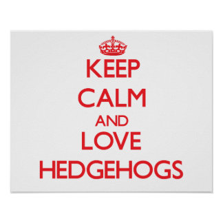 Keep calm and love Hedgehogs Poster
