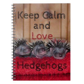 Keep calm and love hedgehogs spiral note book