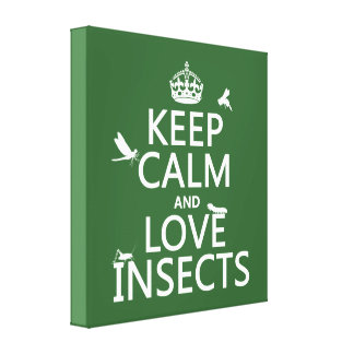 Keep Calm and Love Insects (any background colour) Canvas Print