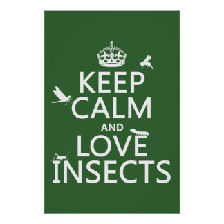 Keep Calm and Love Insects (any background colour) Poster