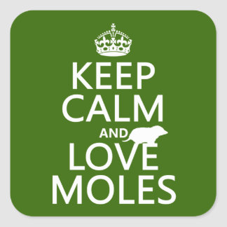 Keep Calm and Love Moles any background color Square Stickers