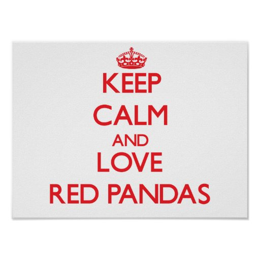 Keep calm and love Red Pandas Posters
