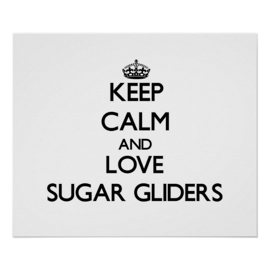 Keep calm and Love Sugar Gliders Poster