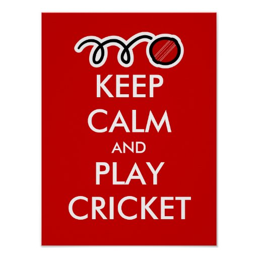 Keep calm and play cricket | Custom Poster parody