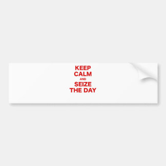 Keep Calm and Seize the Day Bumper Sticker