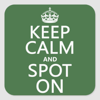 Keep Calm and Spot On (customize colours) Square Sticker