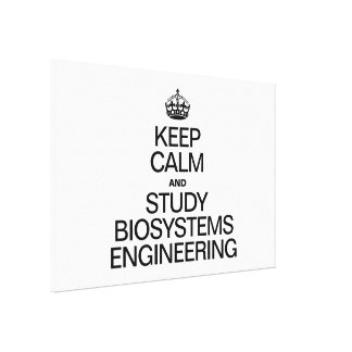 KEEP CALM AND STUDY BIOSYSTEMS ENGINEERING CANVAS PRINT