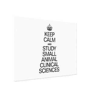 KEEP CALM AND STUDY SMALL ANIMAL CLINICAL SCIENCES STRETCHED CANVAS PRINT