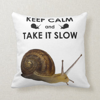 Keep Calm and Take it Slow Pillow (choose colour)