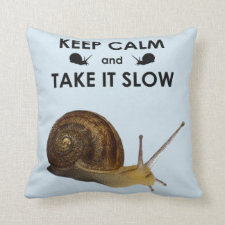 Keep Calm and Take it Slow Pillow (Light Blue)