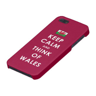 Keep Calm and Think of Wales iPhone 5 Case