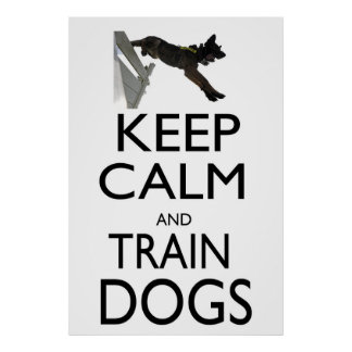 Keep Calm and Train Dogs Poster