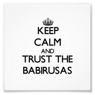 Keep calm and Trust the Babirusas Art Photo
