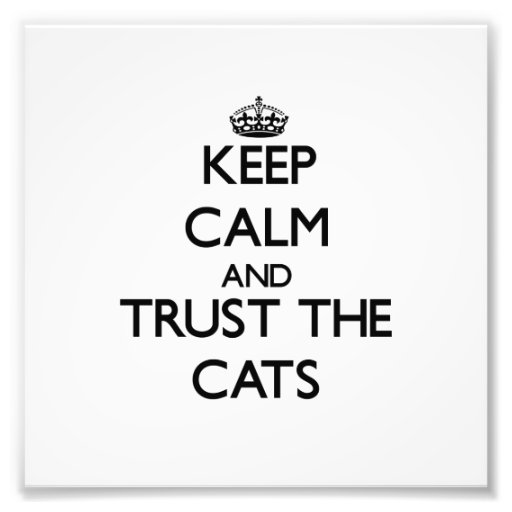 Keep calm and Trust the Cats Photograph