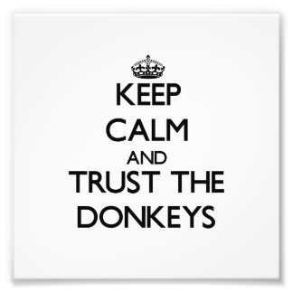 Keep calm and Trust the Donkeys Photographic Print