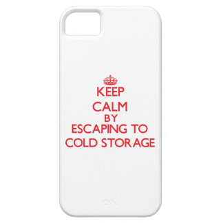 Keep calm by escaping to Cold Storage Massachusett iPhone 5 Case