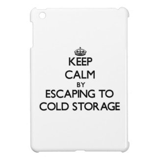 Keep calm by escaping to Cold Storage Massachusett iPad Mini Covers