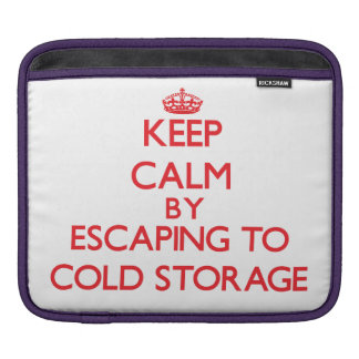 Keep calm by escaping to Cold Storage Massachusett iPad Sleeve