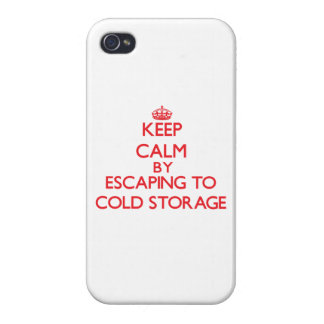 Keep calm by escaping to Cold Storage Massachusett Case For iPhone 4