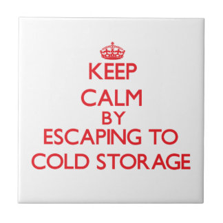 Keep calm by escaping to Cold Storage Massachusett Ceramic Tile