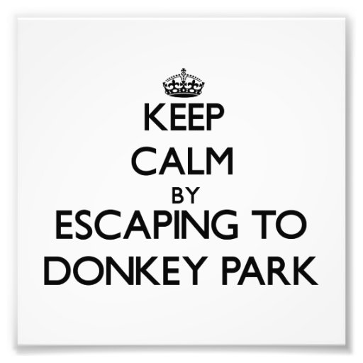Keep calm by escaping to Donkey Park Hawaii Photograph