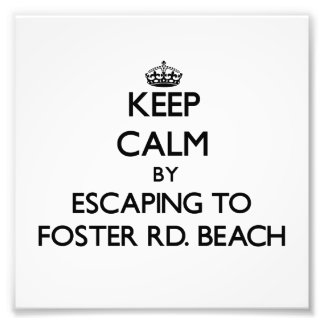Keep calm by escaping to Foster Rd Beach Michigan Photo