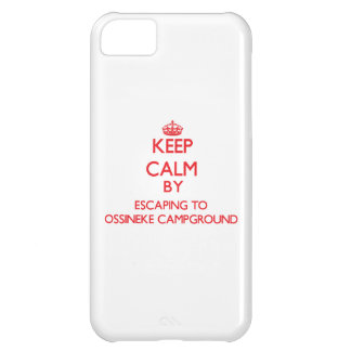 Keep calm by escaping to Ossineke Campground Michi iPhone 5C Cases