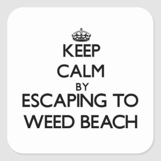 Keep calm by escaping to Weed Beach Connecticut Square Sticker